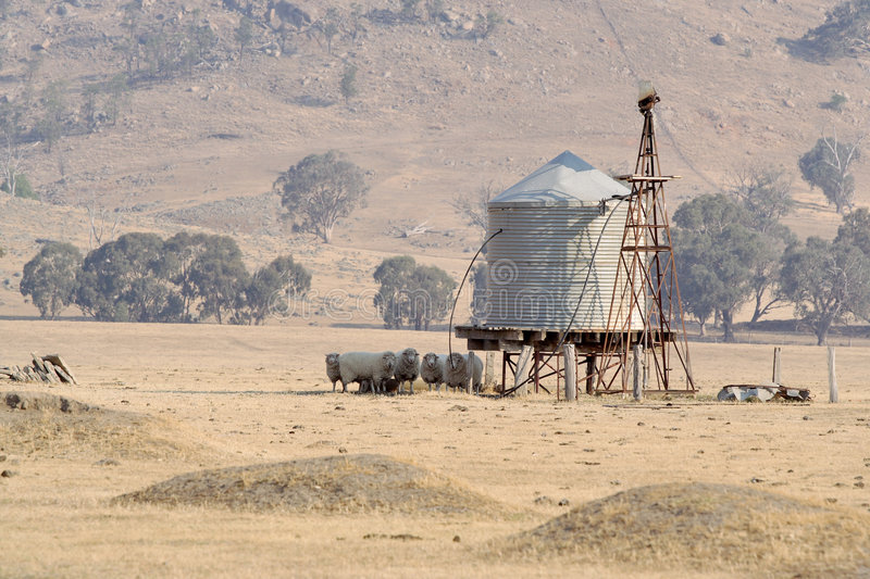 Download Sheep In Shade Of Water Tank Stock Photo - Image: 5063532