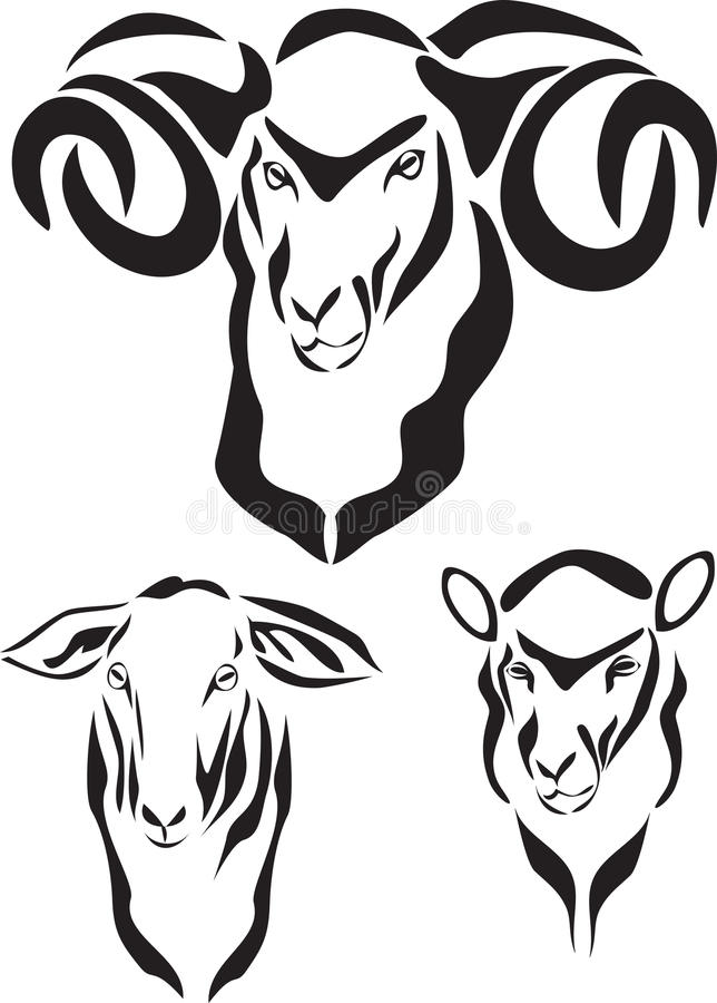 Download Sheep stock vector. Illustration of agricultural, meat - 31516420