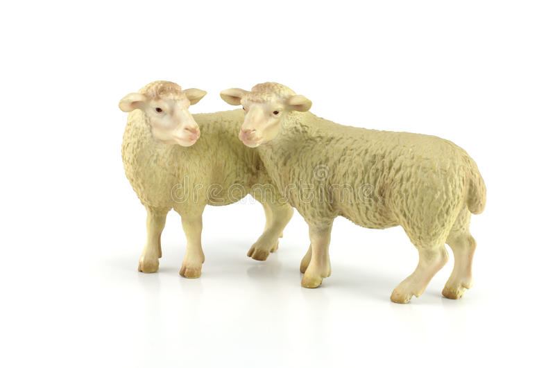 Sheep toy isolated on white stock photos