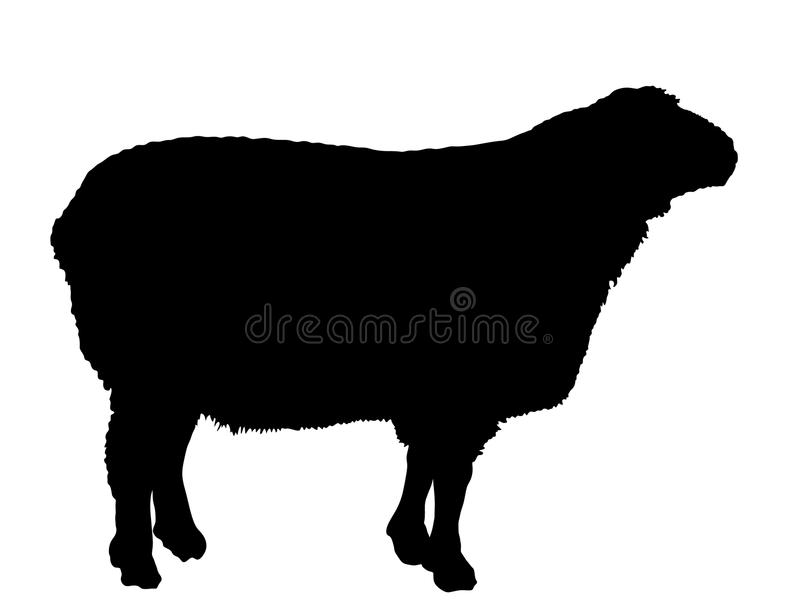 sheep vector silhouette illustration stock vector illustration of rh dreamstime com sheep vector logo sheep vector png