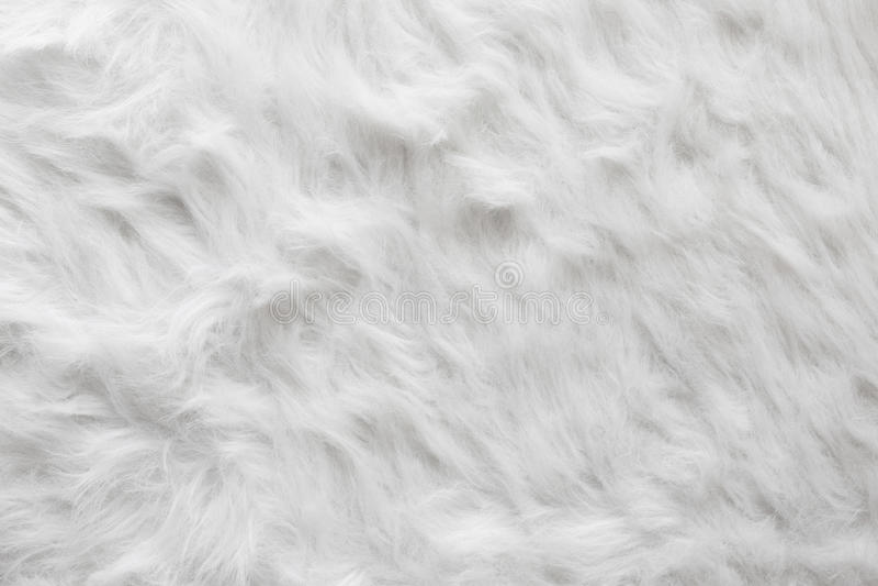 Sheep wool fur background texture wallpaper stock image for Fur wallpaper tumblr