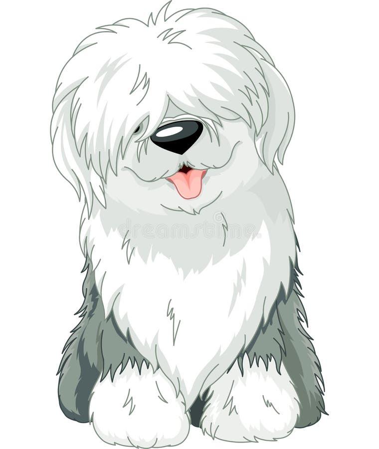 Sheepdog inglês velho ilustração stock