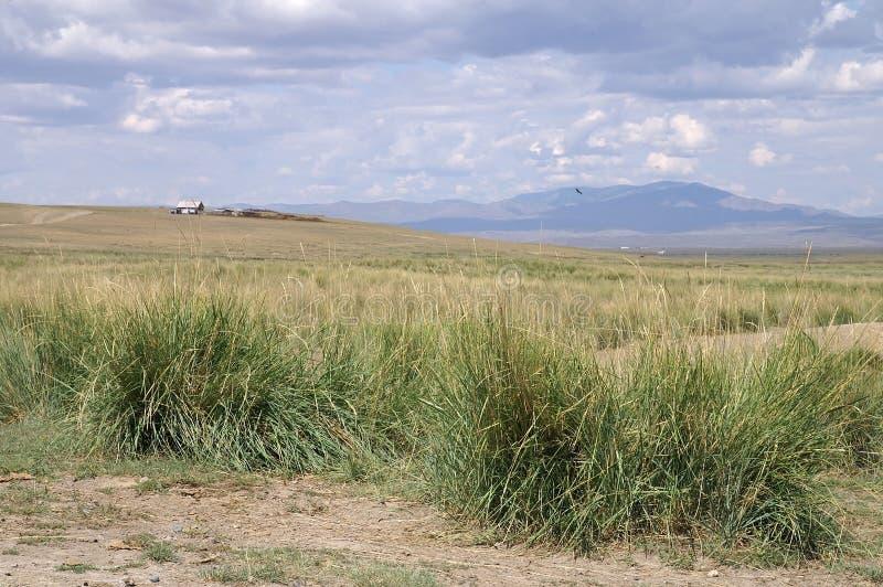 Sheepfold de Tuvinian e cabana do pastor foto de stock