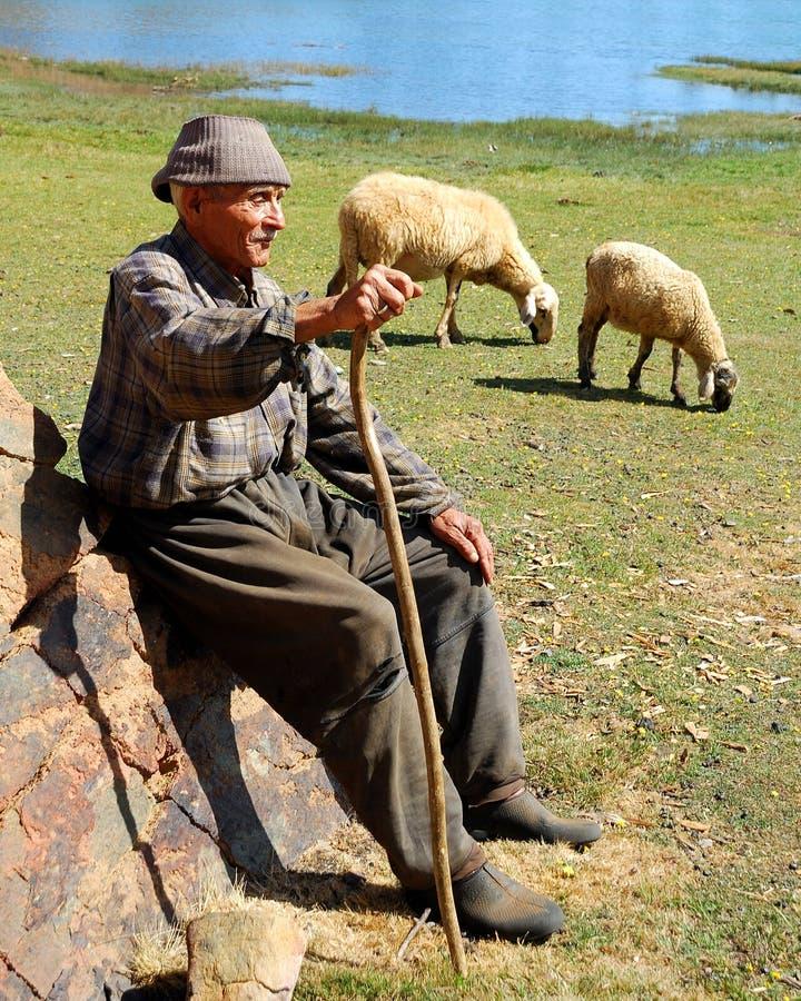 Free Sheepman And Sheep Stock Image - 17843131
