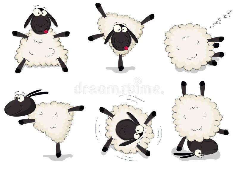 Sheeps stock illustrationer
