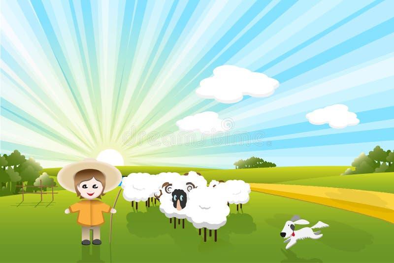 Sheeps And Dog Stock Photo