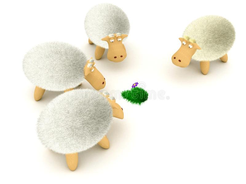Sheeps patrzeją kwiatu ilustracja wektor