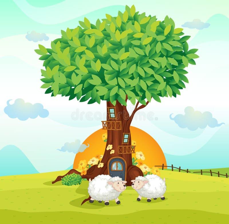 Sheeps pod drzewnym domem royalty ilustracja