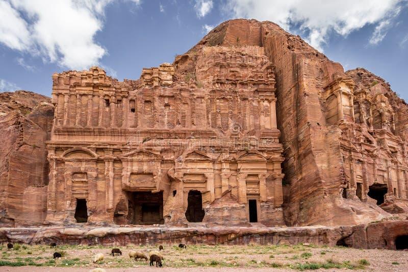Sheeps som betar bredvid slott- och Corinthiangravvalven i den forntida staden av Petra (Jordanien) royaltyfri foto
