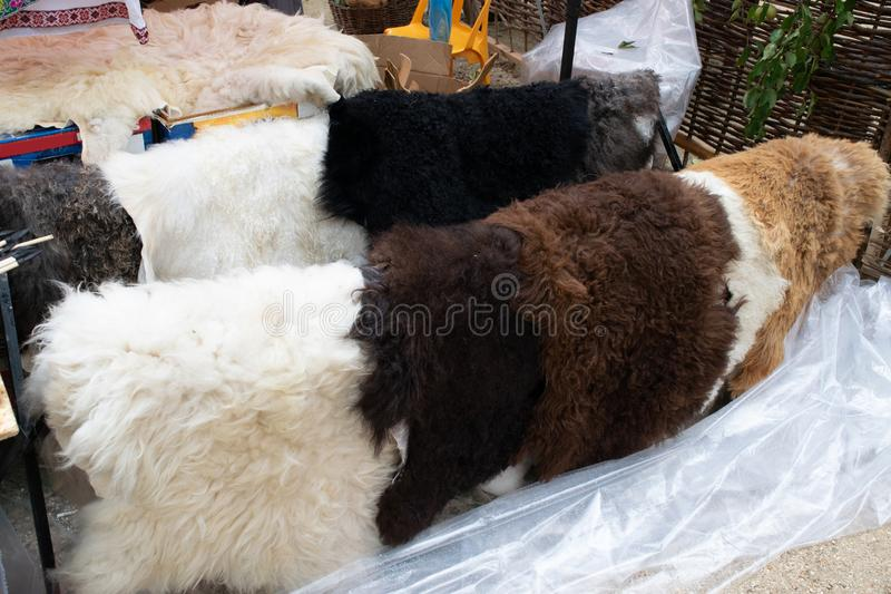 Sheepskin on the counter. Sale of sheep`s clothing and mouton.  royalty free stock photos