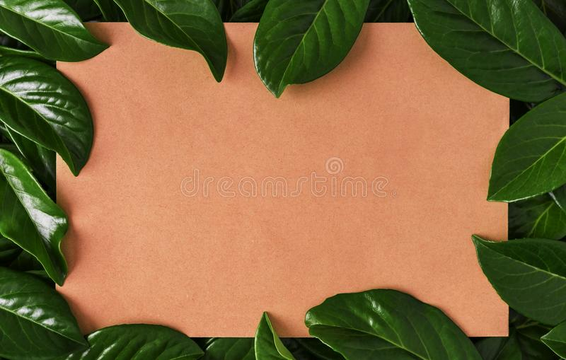 Sheet of cardboard in the green leaves. royalty free stock photo