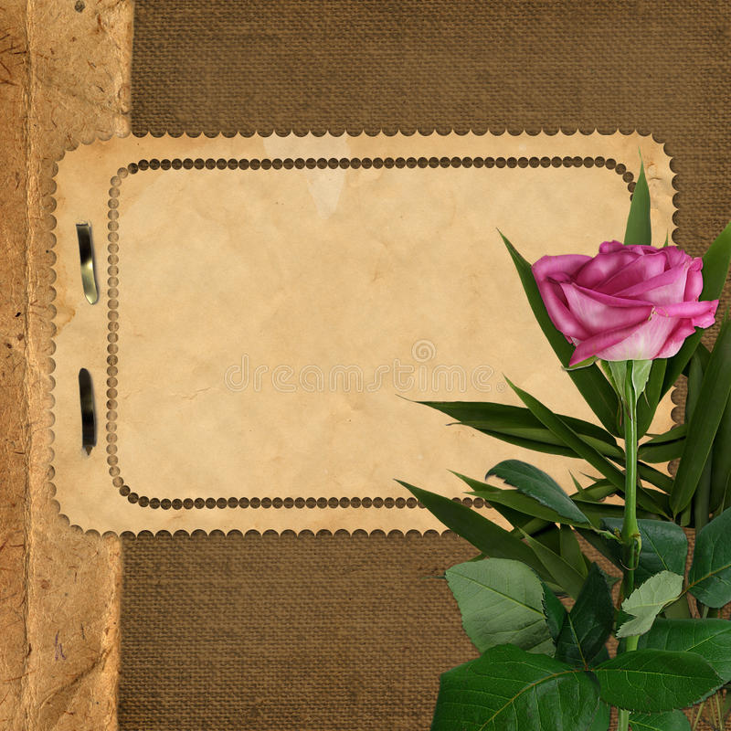 Sheet for design on background with rose
