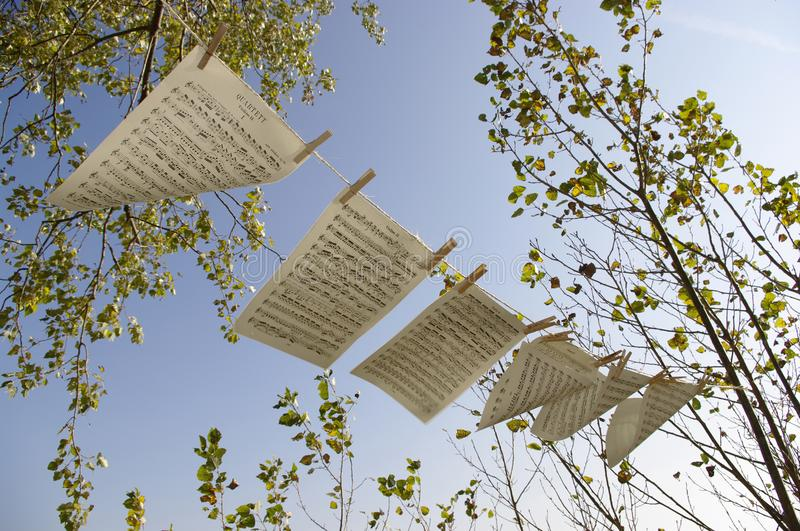 Sheet music in the wind .. royalty free stock images