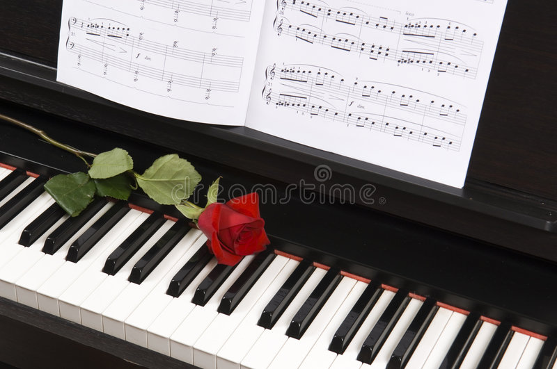sheet music with rose on piano stock photo