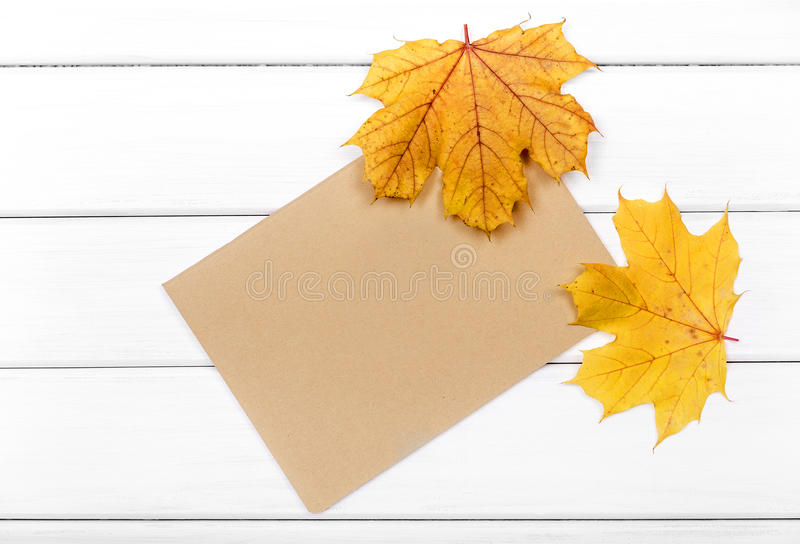 Sheet of paper with autumn leaves. The sheet of paper with autumn leaves on white boards royalty free stock photo