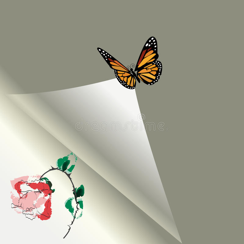 Sheet of paper with a rose and the butterfly