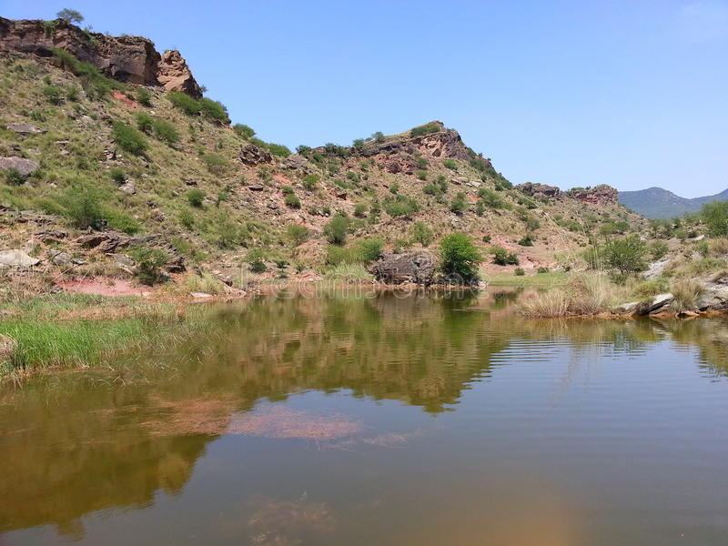 Shehzad fotografi arkivfoto