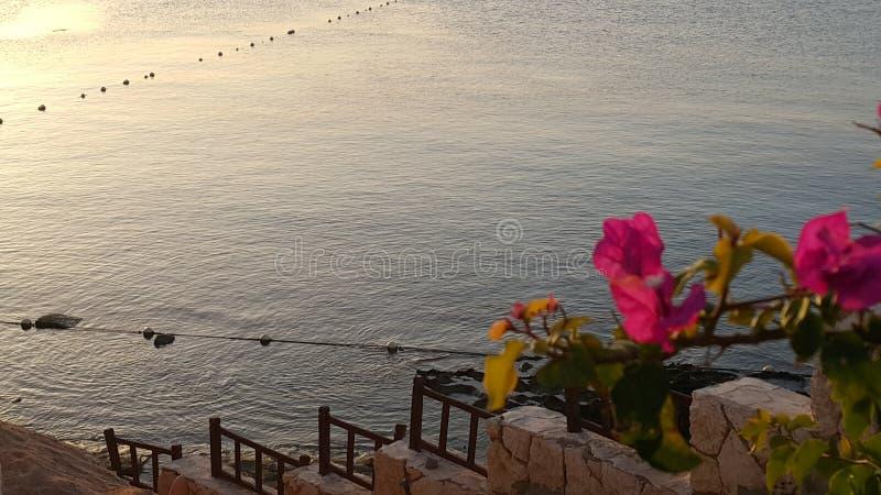 Sheikh EL Sharm στοκ εικόνα με δικαίωμα ελεύθερης χρήσης