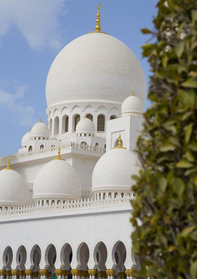 Sheikh Zayed Mosque in Abu Dhabi da una prospettiva insolita fotografie stock