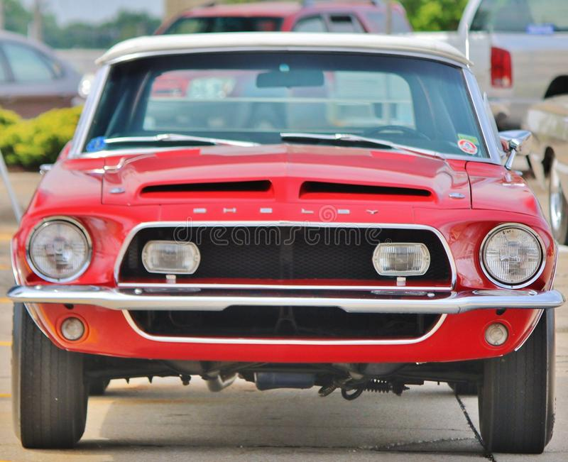 Shelby GT500 Mustang foto de stock royalty free