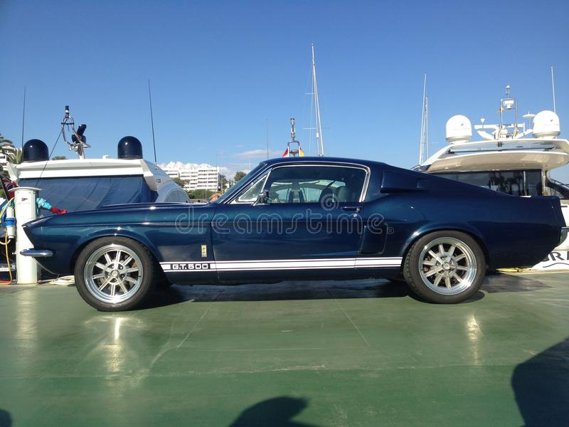 Shelby GT 500 royalty free stock photo