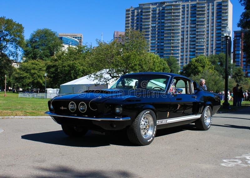 Shelby GT500 Ford Mustang 1967 royaltyfri fotografi