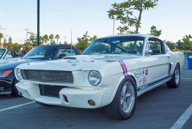 Shelby Mustang GT-350 royalty-vrije stock fotografie
