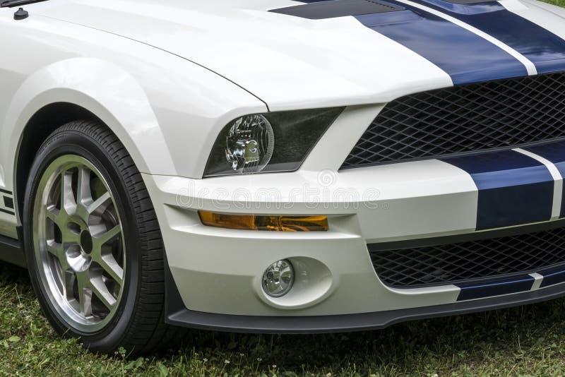 Shelby Vorderseite des Mustangs lizenzfreie stockfotografie