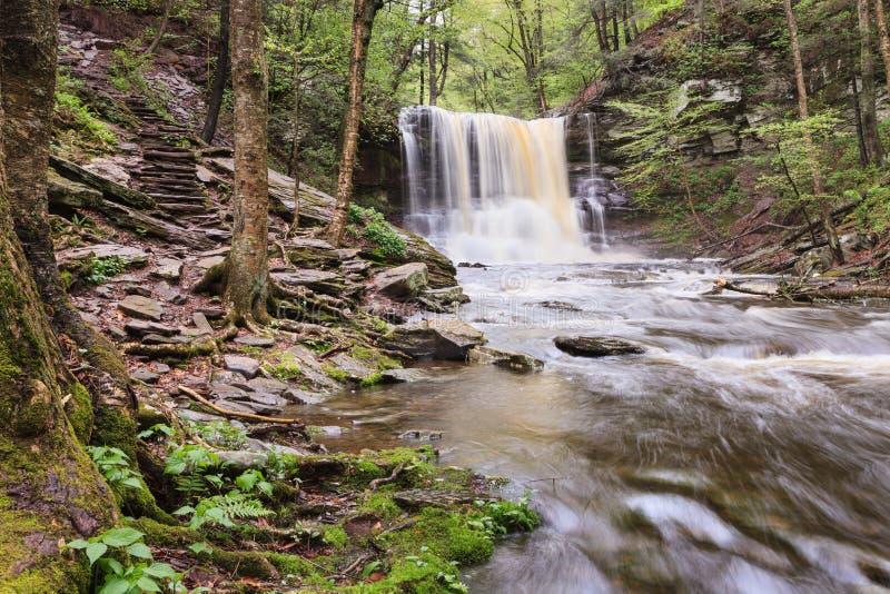 Sheldon Reynolds Falls, Ricketts Glen State Park. The Sheldon Reynolds Waterfall in Ricketts Glen State Park along the Falls Hiking Trail in Luzerne County royalty free stock images