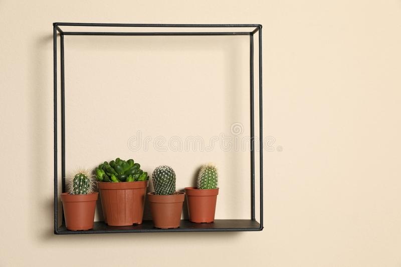Shelf with potted plants on beige wall. Trendy home interior decor. Shelf with potted plants on beige wall, space for text. Trendy home interior decor royalty free stock photos