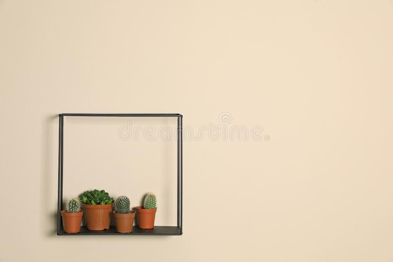 Shelf with potted plants on beige wall. Trendy home interior decor. Shelf with potted plants on beige wall, space for text. Trendy home interior decor stock photography