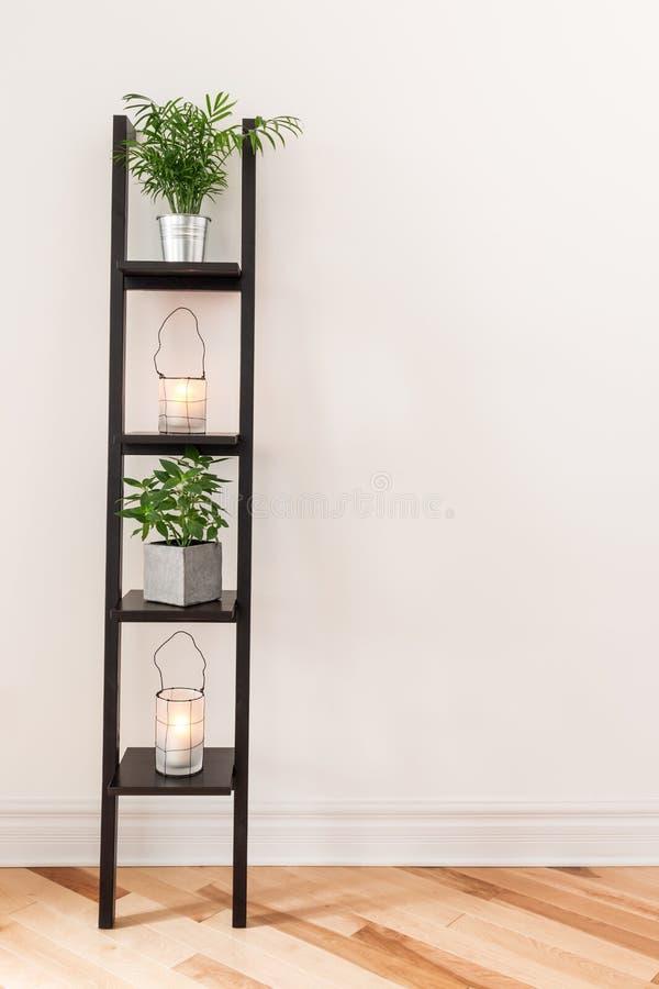 Free Shelf With Plants And Lanterns Stock Image - 34398651