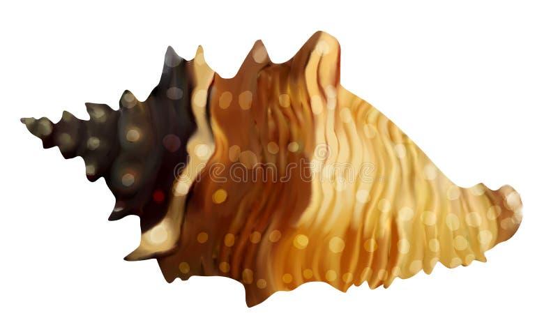 Shell illustration de vecteur