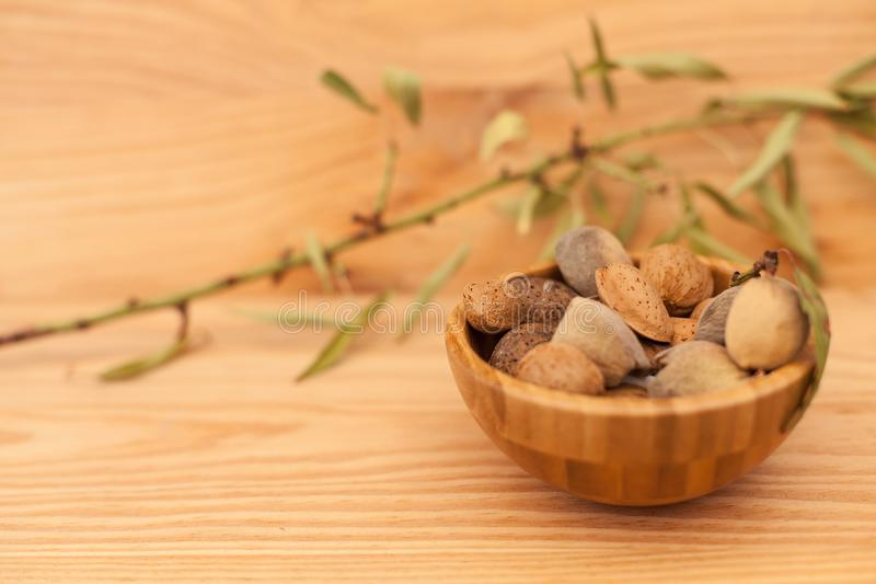 Shell almonds in wooden bowl on wooden table with tree branch stock photos