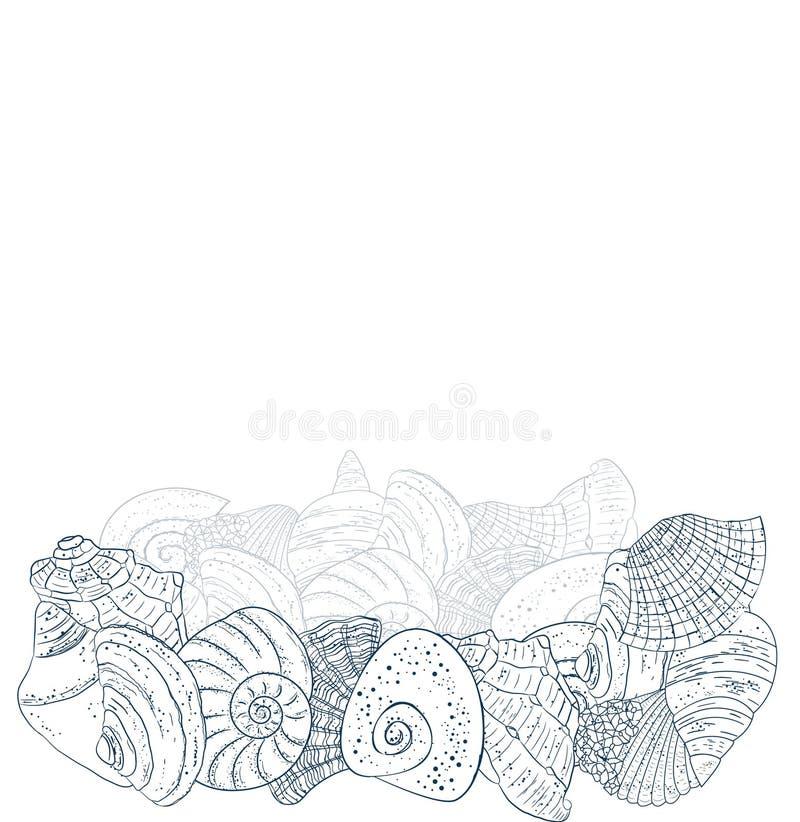 Shell azuis no fundo branco fotos de stock