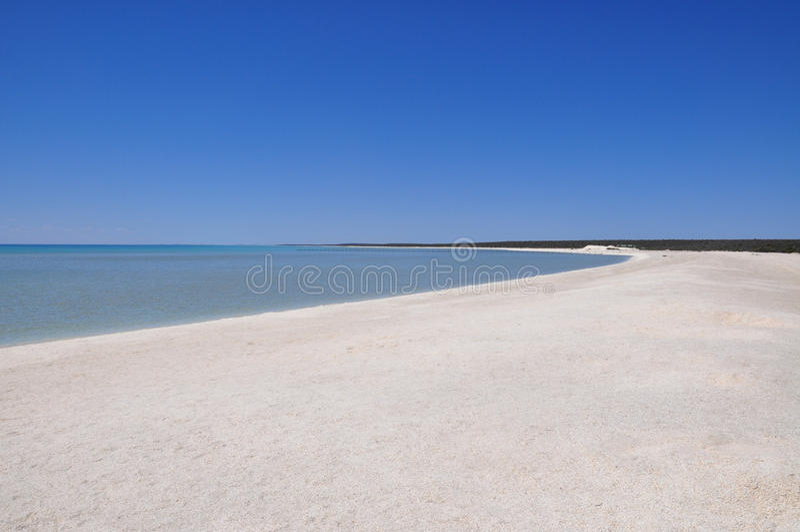 Shell Beach, Shark Bay, Western Australia royalty free stock photography