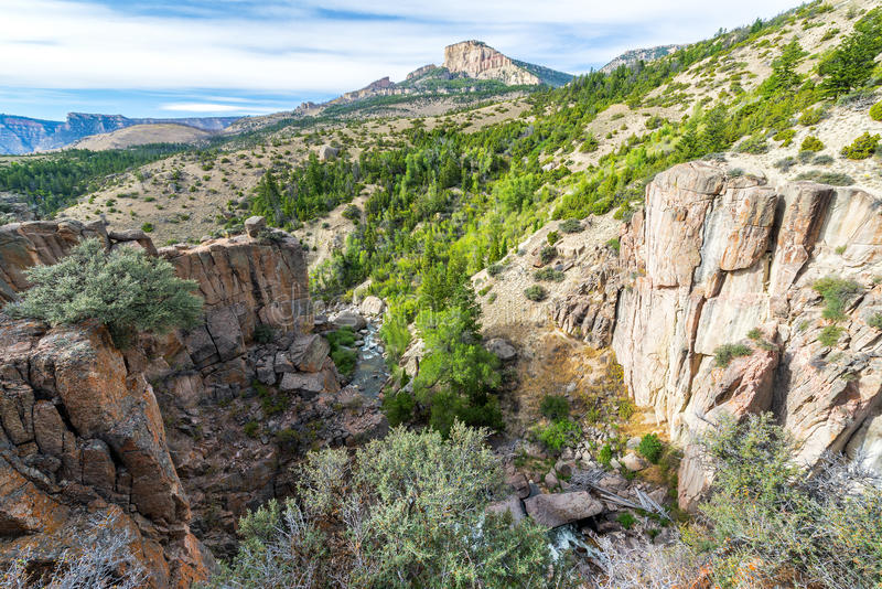 Shell Canyon au Wyoming photographie stock libre de droits