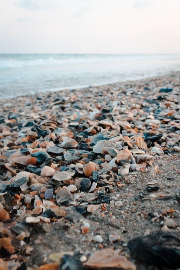 Shell coloca na praia na praia da ilha do oceano fotografia de stock