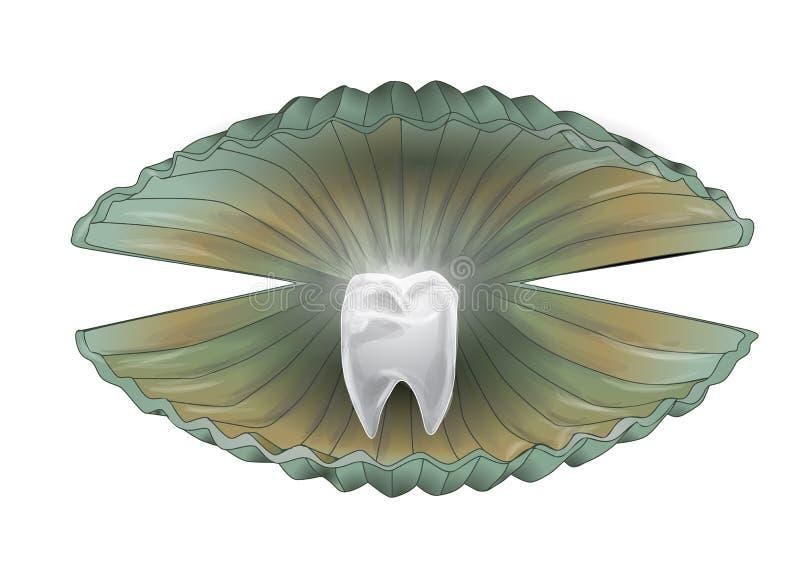 Shell con el diente libre illustration