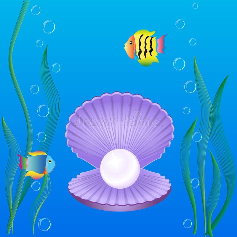 Shell con le perle alga e pesce illustrazione di stock
