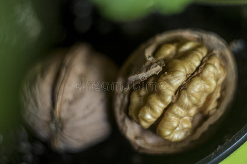 Shell and core of the walnut royalty free stock photography
