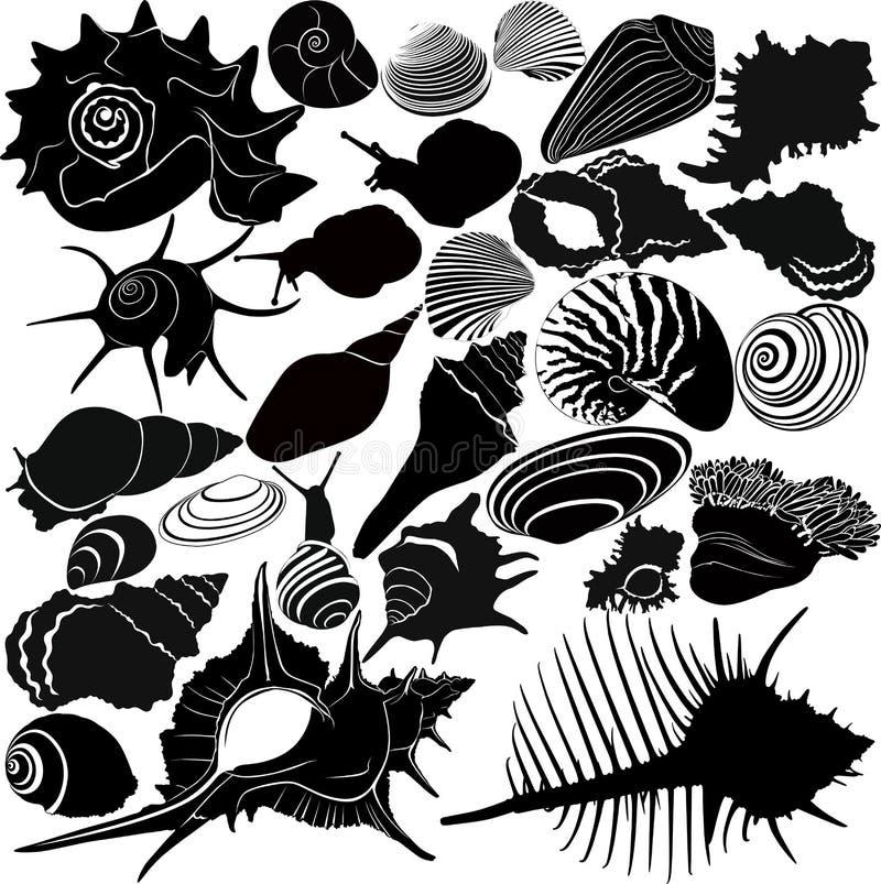 Shell de un caracol ilustración del vector