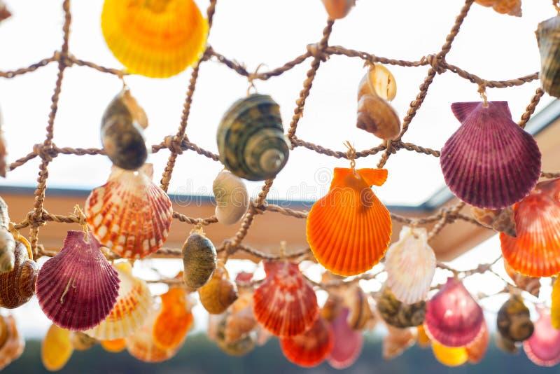 Shell dekorował wewnętrznego element obraz stock