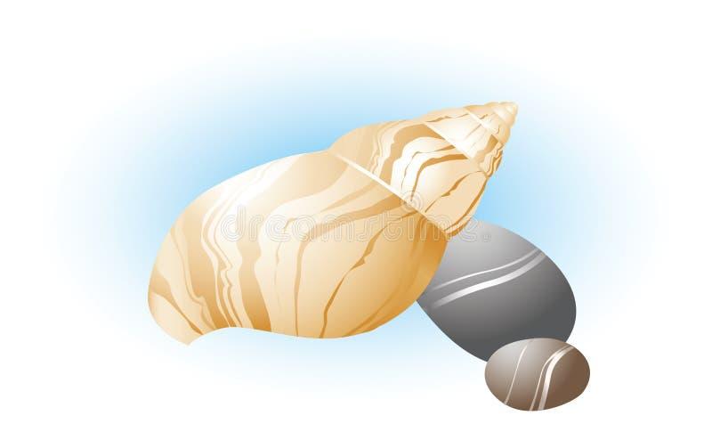 Shell del mar con las piedras ilustración del vector