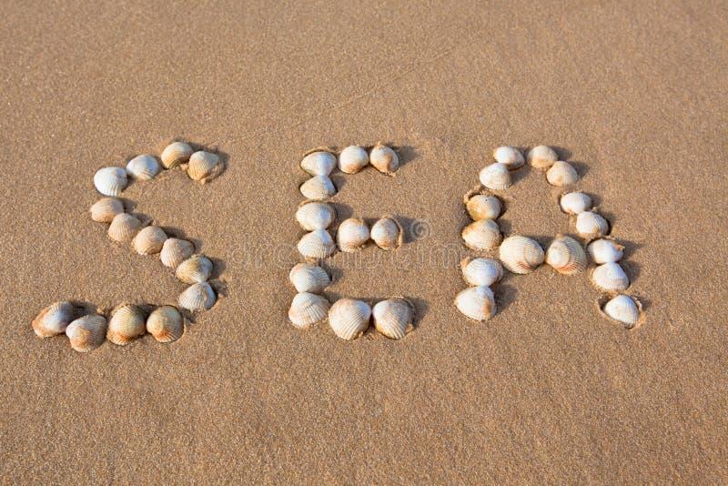 Shell del mar de la palabra escrito en la arena de la playa imagen de archivo