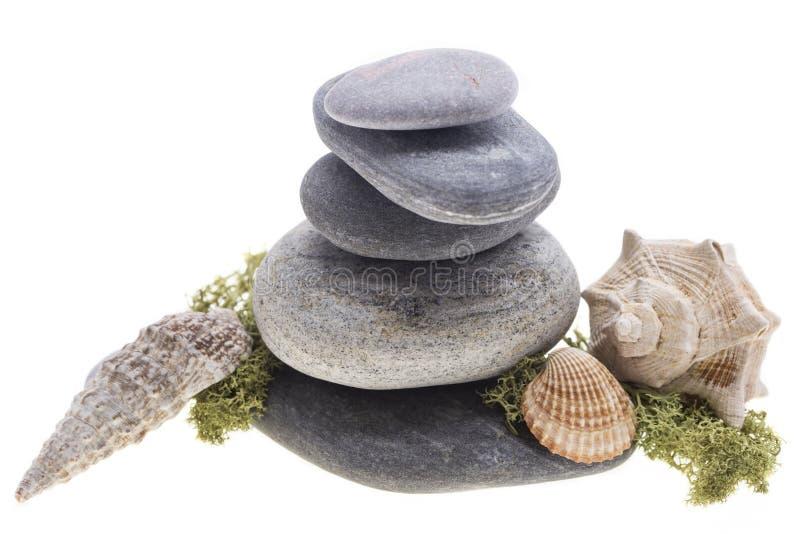 Shell do mar na torre das pedras fotografia de stock