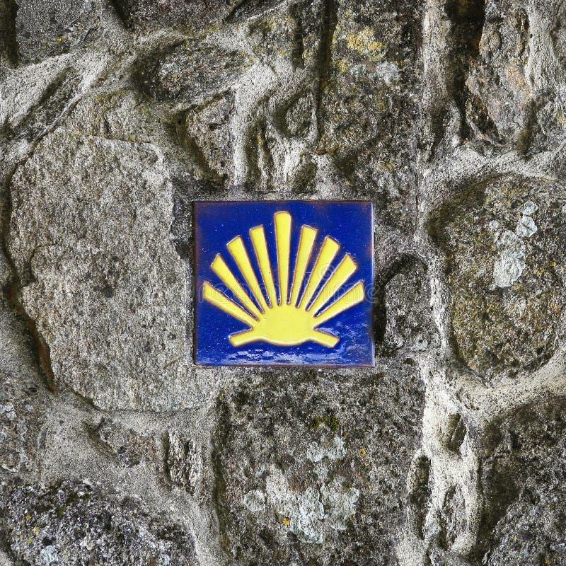 Shell du pèlerin photographie stock libre de droits