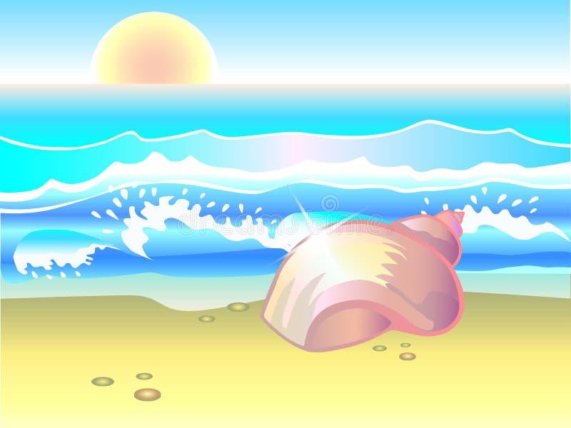 Shell E surf Concha do mar na praia ilustração stock