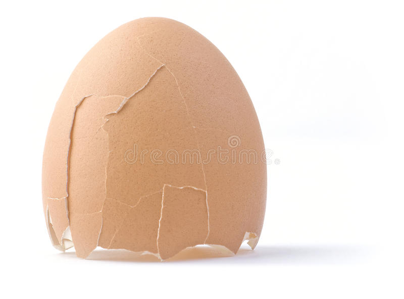 Shell Of The Egg. Stock Image