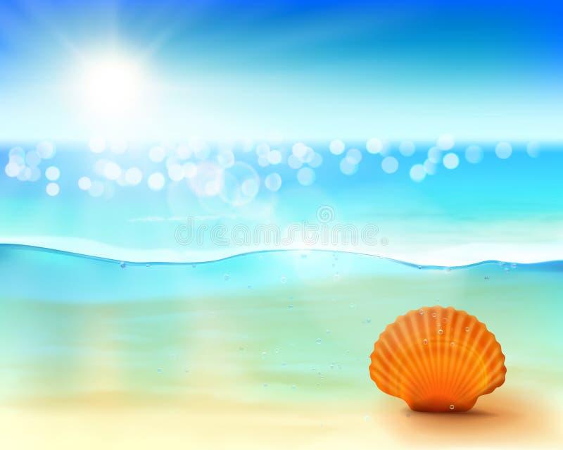 Shell en mer Illustration de vecteur illustration stock